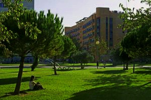 Colegio Mayor Galileo Galilei – Valencia